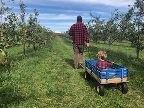 Man and child in apple orchard
